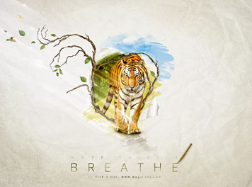 Breathe Wallpaper